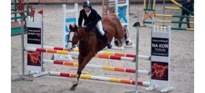 zawody halowe konie post image